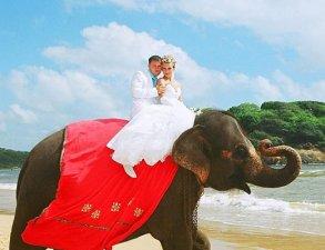 Свадебная церемония на пляже «люкс»